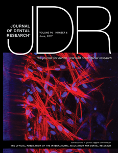 JDR cover